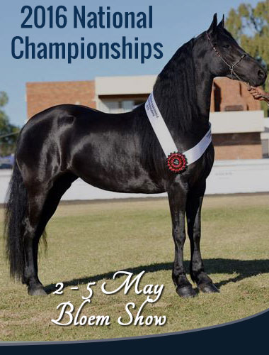 National Friesian Championship 2016